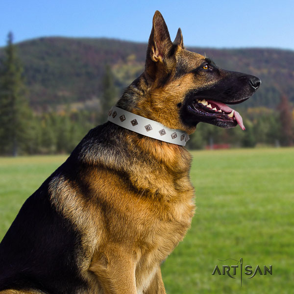 German Shepherd easy adjustable full grain natural leather dog collar with inimitable adornments