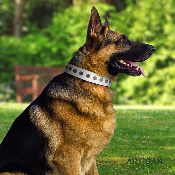German Shepherd comfortable natural genuine leather dog collar with impressive decorations