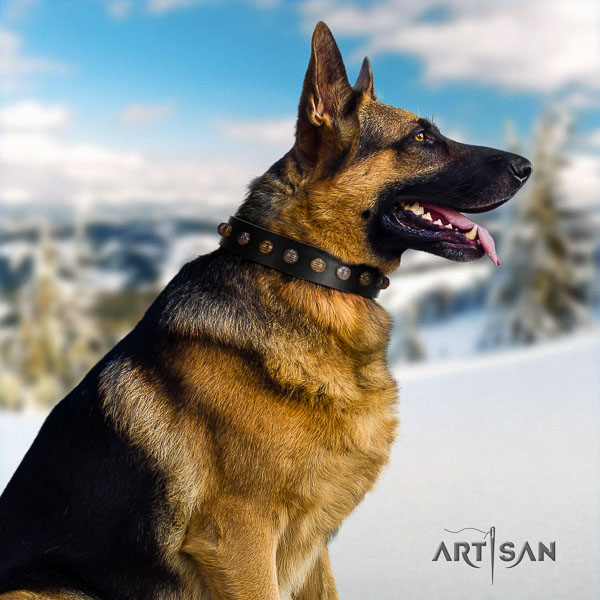 German Shepherd easy adjustable full grain genuine leather dog collar with extraordinary adornments