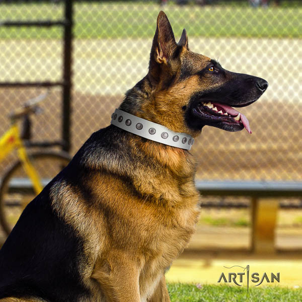 German Shepherd perfect fit full grain natural leather dog collar with unusual studs
