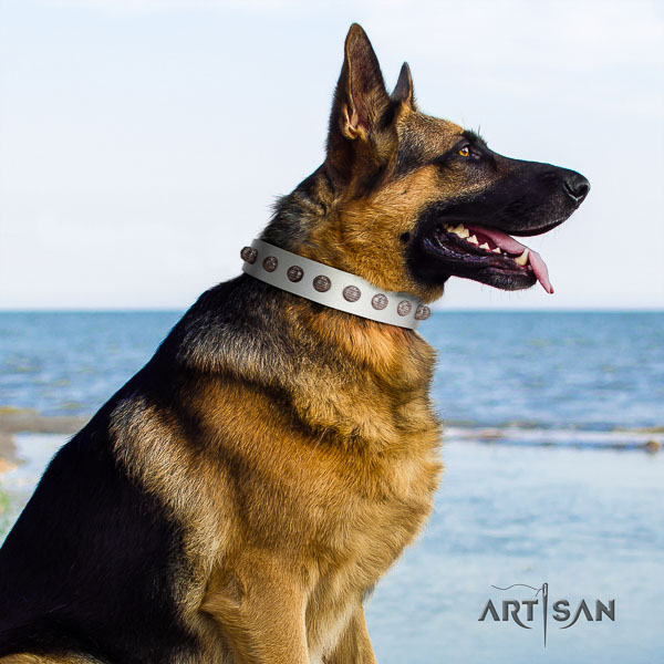 German Shepherd handmade natural genuine leather dog collar with significant decorations