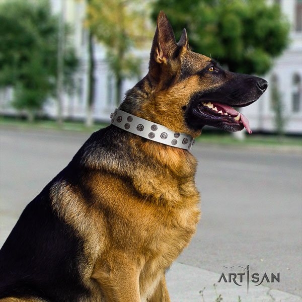 German Shepherd top quality full grain genuine leather dog collar with top notch decorations