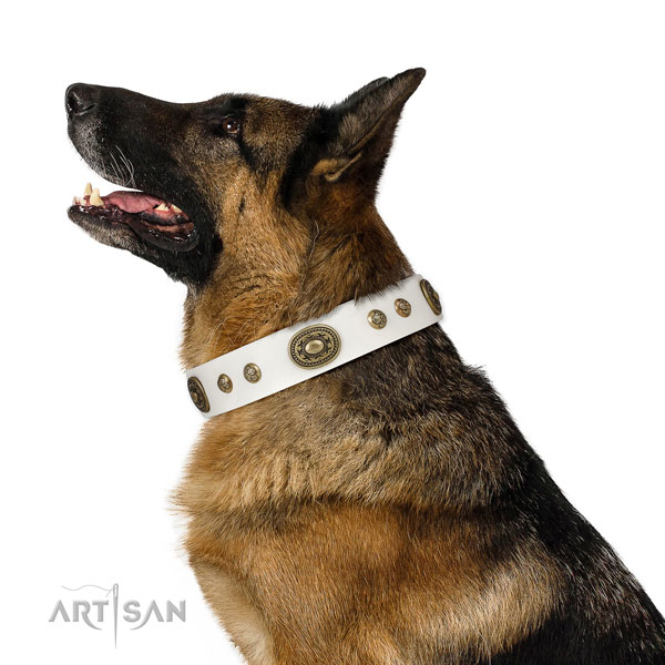 German Shepherd stylish design natural genuine leather dog collar for handy use title=German Shepherd genuine leather collar with studs for comfortable wearing