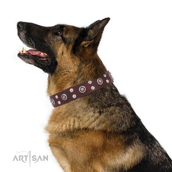 German Shepherd decorated full grain natural leather dog collar for walking title=German Shepherd natural genuine leather collar with embellishments for stylish walking