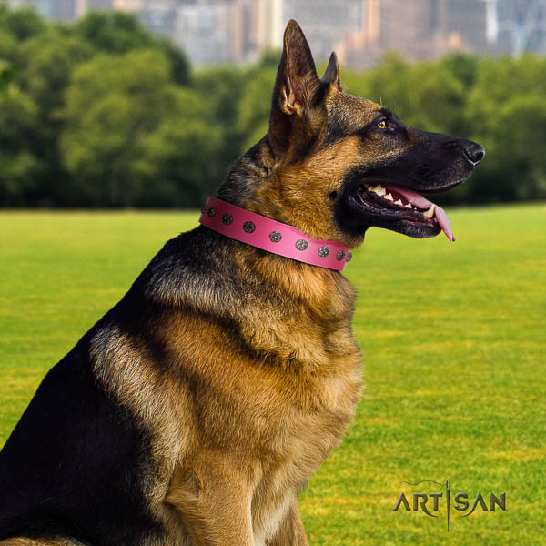 German Shepherd easy adjustable full grain leather dog collar with fashionable decorations