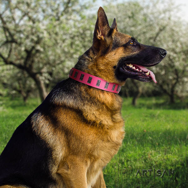 German Shepherd fine quality leather dog collar with incredible adornments
