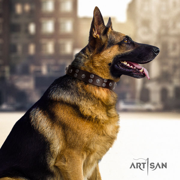 German Shepherd easy wearing natural genuine leather dog collar with awesome studs