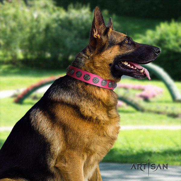 German Shepherd handmade leather dog collar with amazing adornments