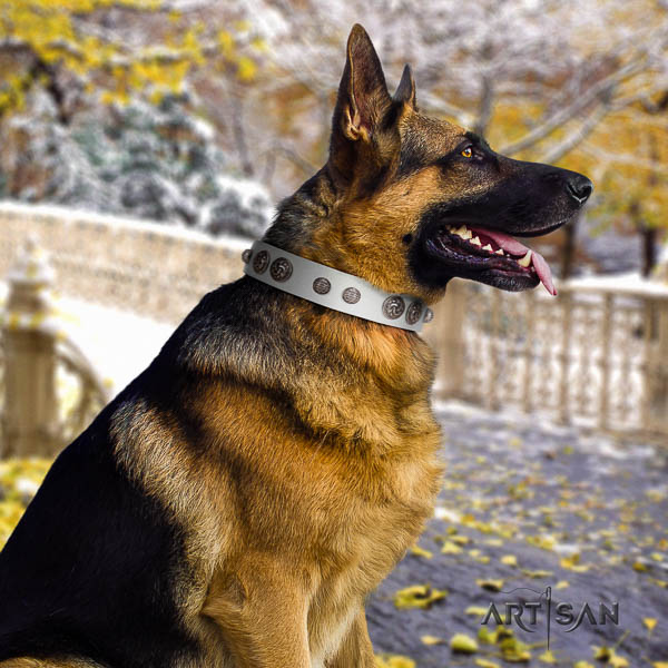 German Shepherd handmade full grain natural leather dog collar with unusual studs