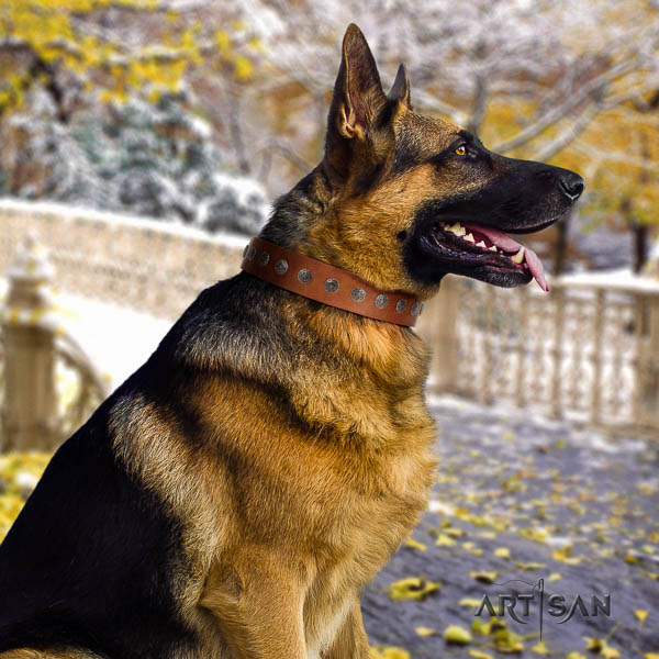 German Shepherd adjustable genuine leather dog collar with awesome decorations
