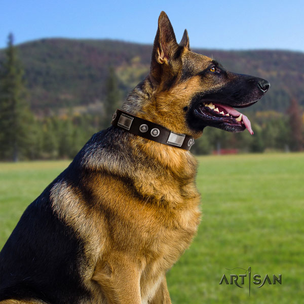German Shepherd adorned full grain natural leather dog collar for your stylish doggie