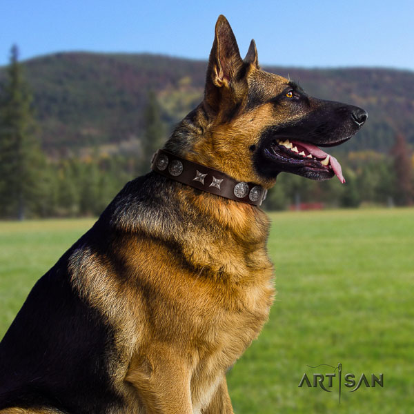 German Shepherd handmade natural genuine leather dog collar with exquisite studs