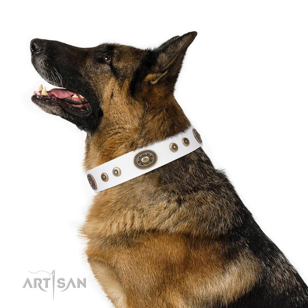 German Shepherd fine quality natural genuine leather dog collar for everyday walking title=German Shepherd full grain leather collar with decorations for walking
