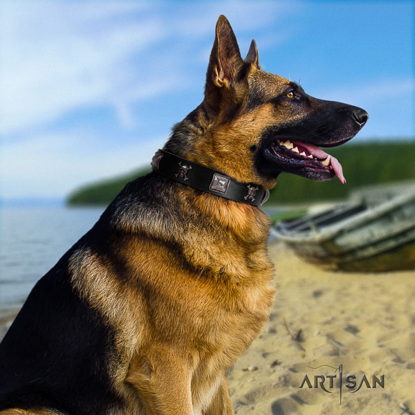 German Shepherd adjustable full grain natural leather dog collar with remarkable embellishments