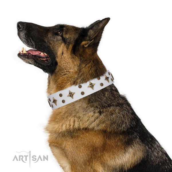 German Shepherd embellished leather dog collar for handy use title=German Shepherd full grain leather collar with studs for comfortable wearing