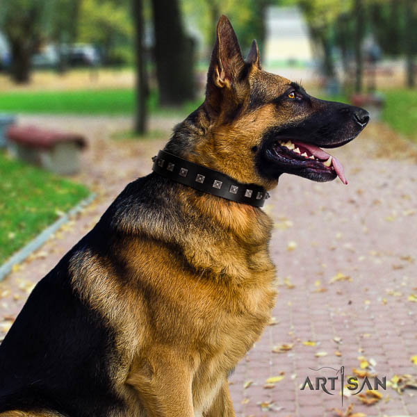 German Shepherd handcrafted natural genuine leather dog collar with designer adornments