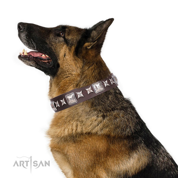German Shepherd incredible leather dog collar for comfy wearing title=German Shepherd genuine leather collar with embellishments for walking