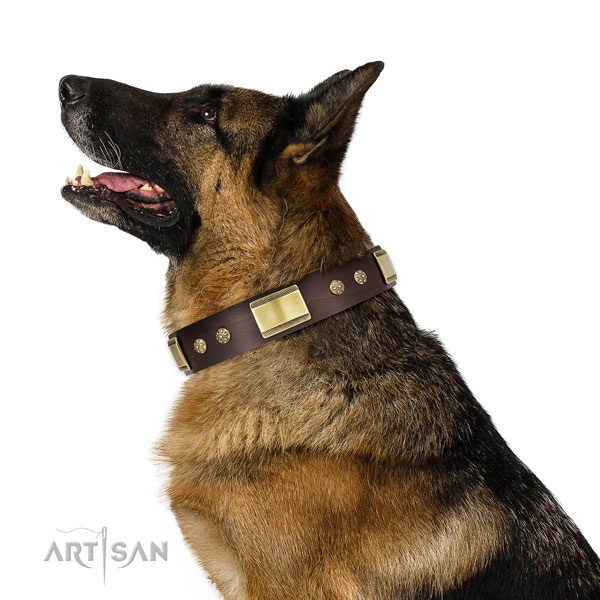 German Shepherd convenient leather dog collar for everyday use title=German Shepherd full grain genuine leather collar with studs for daily use