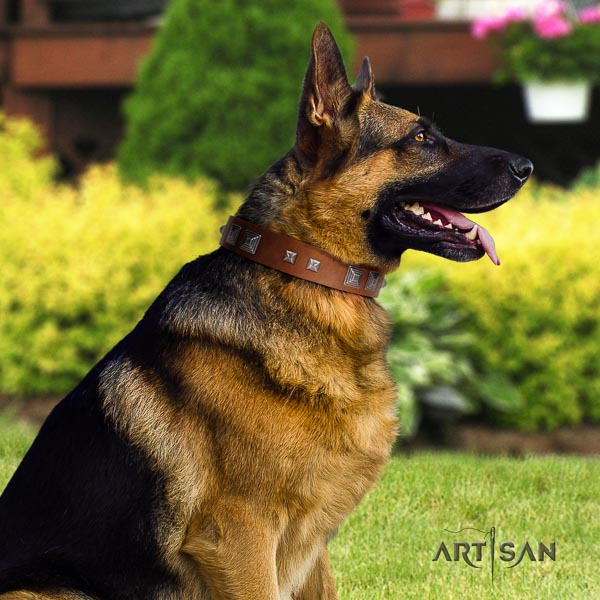German Shepherd easy to adjust full grain genuine leather dog collar with awesome adornments