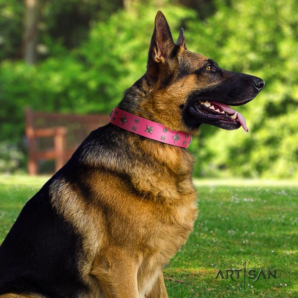 German Shepherd easy wearing genuine leather dog collar with significant studs
