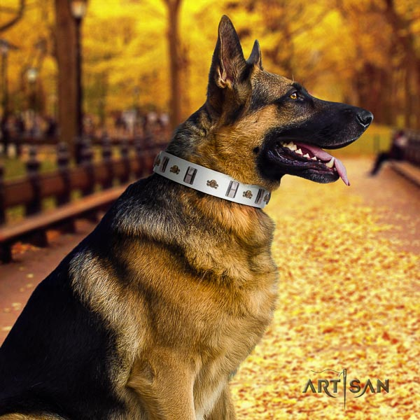 German Shepherd handcrafted full grain leather dog collar with stylish design embellishments