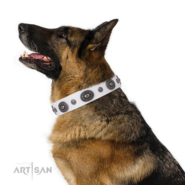 German Shepherd easy to adjust genuine leather dog collar for daily walking title=German Shepherd full grain genuine leather collar with embellishments for everyday walking