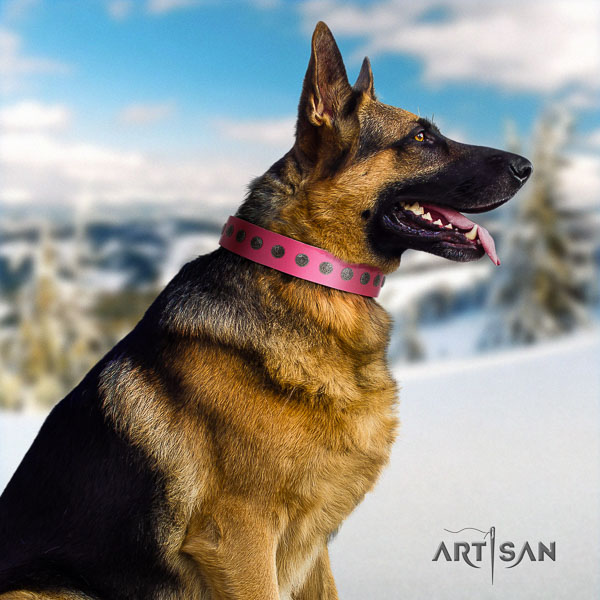 German Shepherd comfortable full grain genuine leather dog collar with stylish decorations