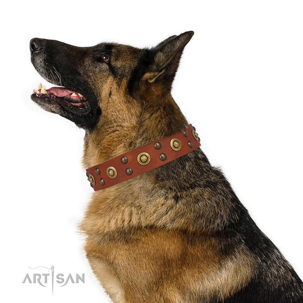 German Shepherd exquisite genuine leather dog collar for daily use title=German Shepherd full grain natural leather collar with studs for everyday use