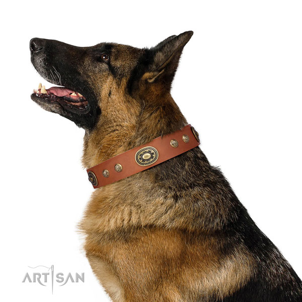 German Shepherd stylish design leather dog collar for everyday walking title=German Shepherd natural genuine leather collar with embellishments for everyday walking