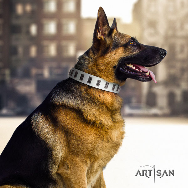 German Shepherd easy wearing natural genuine leather dog collar with exceptional adornments