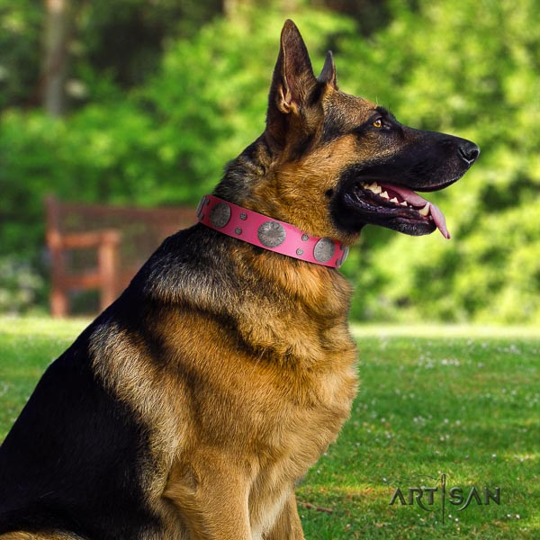 German Shepherd best quality full grain leather dog collar with unusual studs