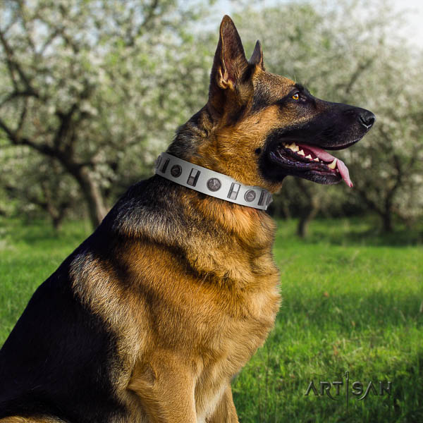German Shepherd easy wearing genuine leather dog collar with significant adornments