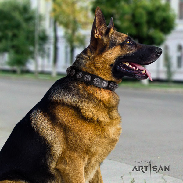 German Shepherd handcrafted natural genuine leather dog collar with top notch embellishments