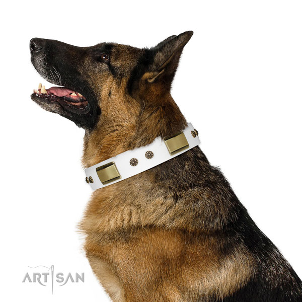 German Shepherd fashionable full grain genuine leather dog collar for daily use title=German Shepherd full grain natural leather collar with embellishments for stylish walking