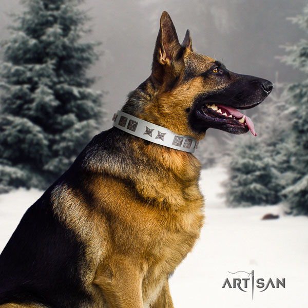 German Shepherd adjustable full grain natural leather dog collar with designer adornments