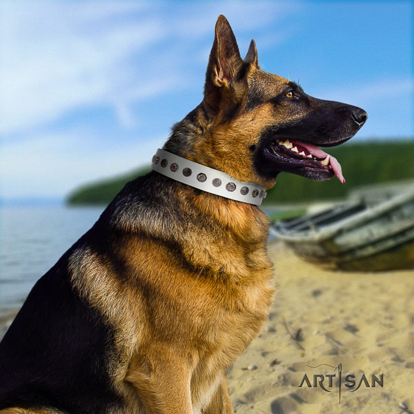 German Shepherd handmade full grain natural leather dog collar with exquisite decorations