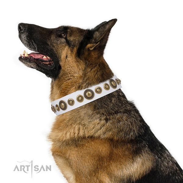 German Shepherd extraordinary full grain natural leather dog collar for daily walking title=German Shepherd full grain leather collar with adornments for handy use