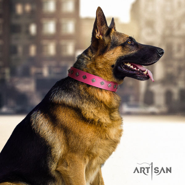 German Shepherd fine quality full grain leather dog collar with impressive adornments