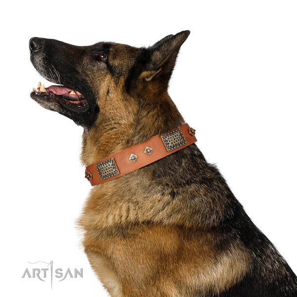 German Shepherd comfortable genuine leather dog collar for daily use title=German Shepherd genuine leather collar with adornments for daily walking