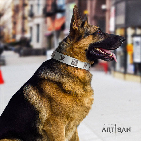 German Shepherd perfect fit full grain natural leather dog collar with stylish design adornments