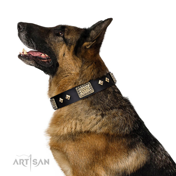 German Shepherd top quality leather dog collar for daily use title=German Shepherd full grain leather collar with decorations for stylish walking