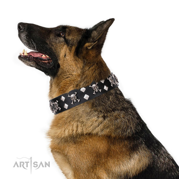 German Shepherd amazing natural genuine leather dog collar for easy wearing title=German Shepherd full grain genuine leather collar with adornments for daily walking