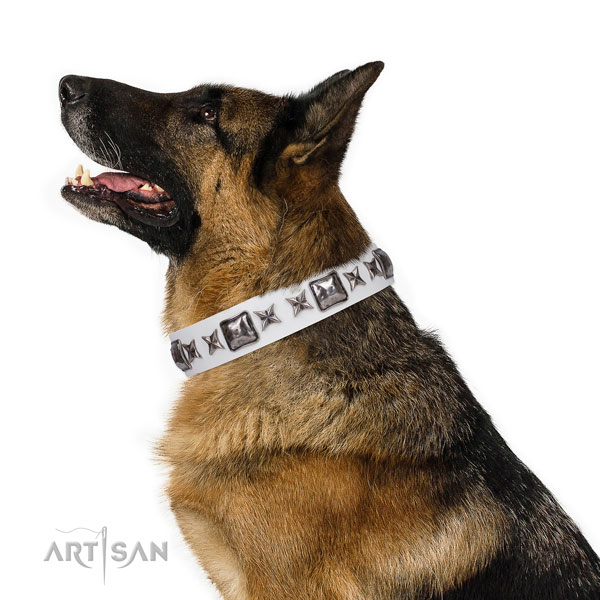 German Shepherd inimitable full grain leather dog collar for fancy walking title=German Shepherd full grain genuine leather collar with adornments for stylish walking
