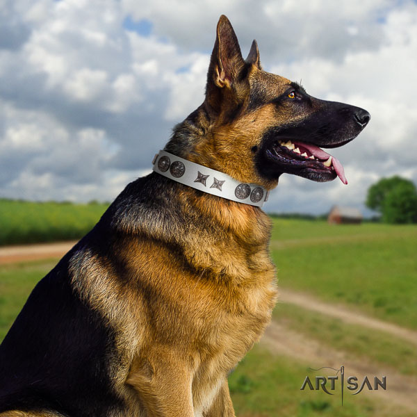 German Shepherd top quality genuine leather dog collar with stylish design adornments
