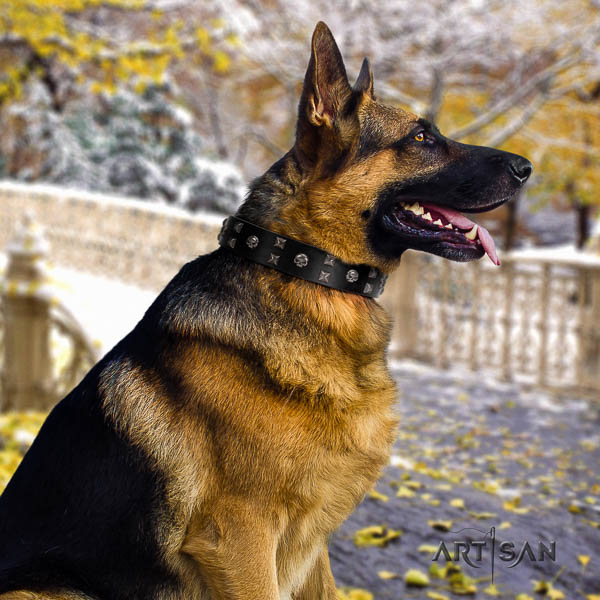 German Shepherd comfortable genuine leather dog collar with stunning decorations