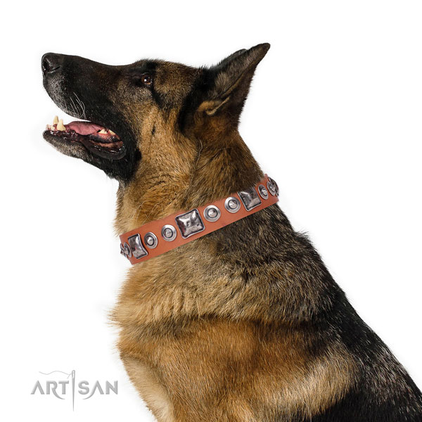 German Shepherd handcrafted genuine leather dog collar for everyday walking title=German Shepherd full grain genuine leather collar with adornments for basic training