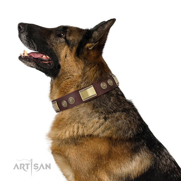 German Shepherd stunning full grain natural leather dog collar for everyday use title=German Shepherd genuine leather collar with decorations for comfy wearing