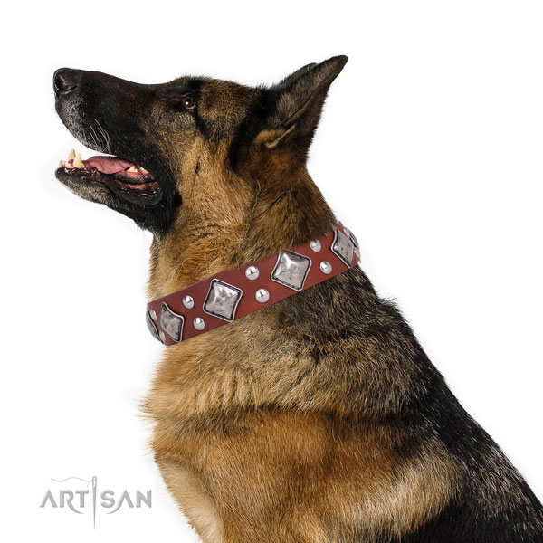 German Shepherd significant genuine leather dog collar for everyday walking title=German Shepherd natural genuine leather collar with embellishments for handy use