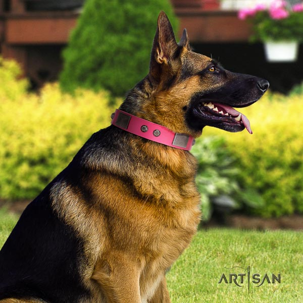 German Shepherd handcrafted full grain genuine leather dog collar with exceptional embellishments