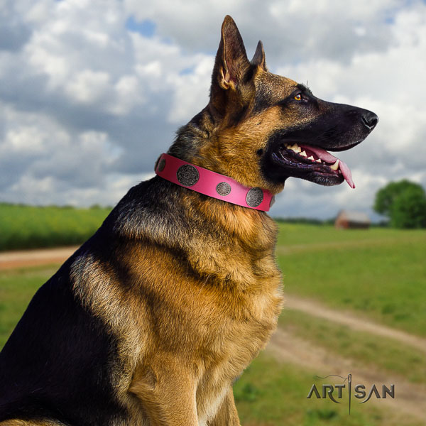 German Shepherd easy to adjust natural genuine leather dog collar with inimitable studs